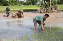 Bez vykořisťování: malí farmáři, velké nápady